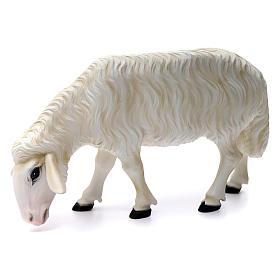 Deux moutons pour Nativité 80 cm en fibre de verre POUR EXTÉRIEUR s3