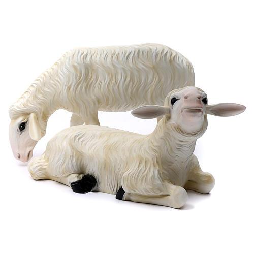 Deux moutons pour Nativité 80 cm en fibre de verre POUR EXTÉRIEUR 1