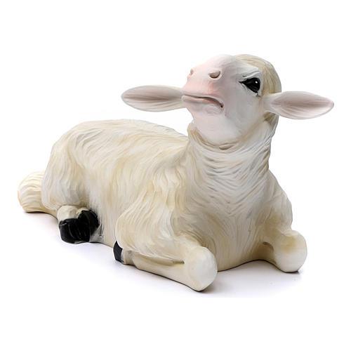 Deux moutons pour Nativité 80 cm en fibre de verre POUR EXTÉRIEUR 2