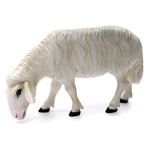 Deux moutons pour Nativité 80 cm en fibre de verre POUR EXTÉRIEUR 3