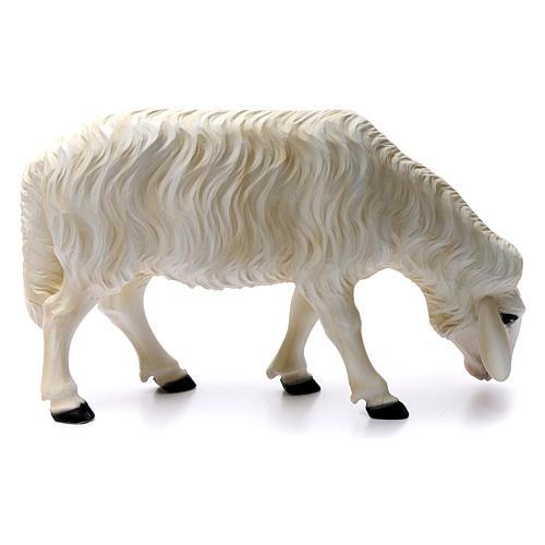 Deux moutons pour Nativité 80 cm en fibre de verre POUR EXTÉRIEUR 5
