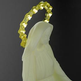 Statue Vierge Miraculeuse phosphorescente 14 cm s5
