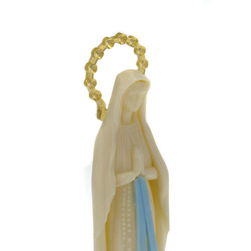 Statua Madonna Miracolosa fosforescente 14 cm 4