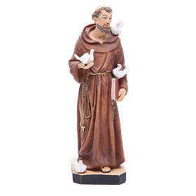 Saint Francis statue 30 cm in coloured resin s1