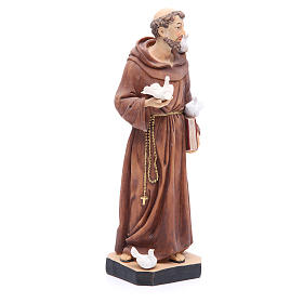 Saint Francis statue 30 cm in coloured resin s4