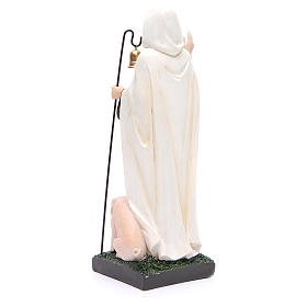 Statue in resin Saint Anthony the Abbot 30 cm s3