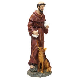 St. Francis with wolf statue in resin 50 cm s4