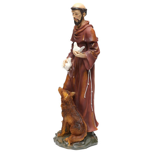 St. Francis with wolf statue in resin 50 cm 3