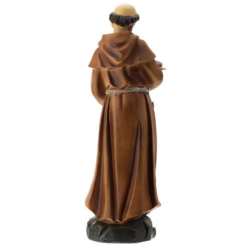 Statua S. Francesco resina 30 cm 5