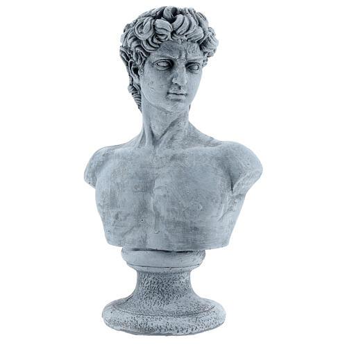 Buste David de Michel-Ange résine 30x19 cm 3