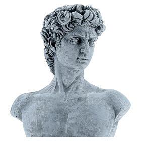Busto David Michelangelo resina 30x19 cm s2