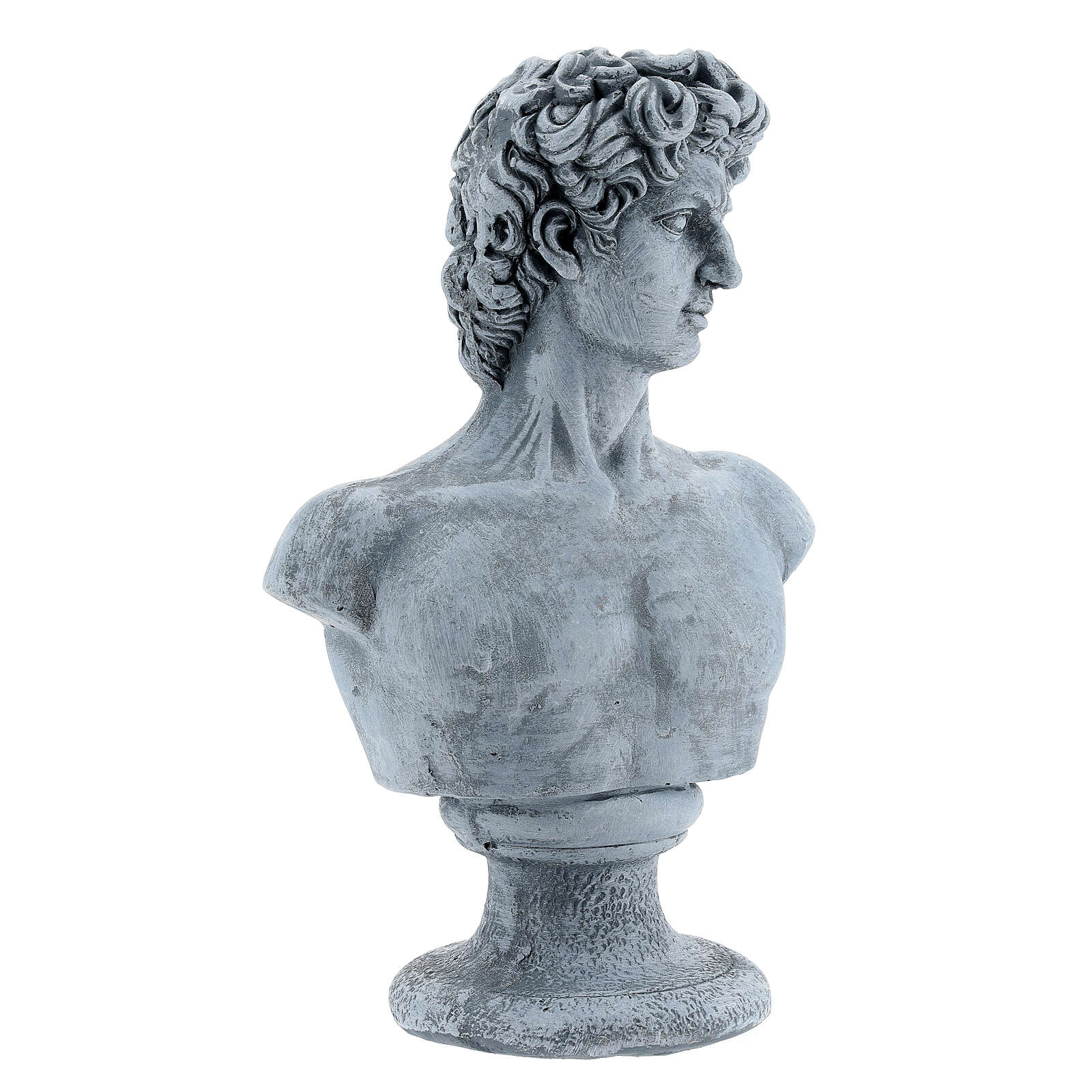 Bust of David by Michelangelo in resin, 30x19 cm 4