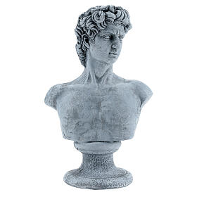 Bust of David by Michelangelo in resin, 30x19 cm s1