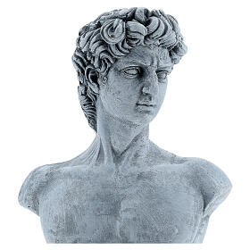 Bust of David by Michelangelo in resin, 30x19 cm s2