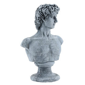 Bust of David by Michelangelo in resin, 30x19 cm s4