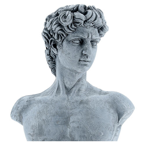 Bust of David by Michelangelo in resin, 30x19 cm 2