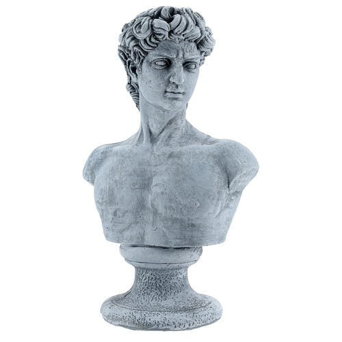Bust of David by Michelangelo in resin, 30x19 cm 3