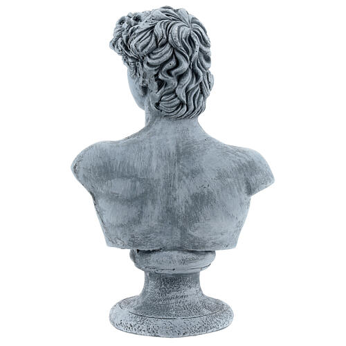 Bust of David by Michelangelo in resin, 30x19 cm 5