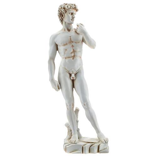 Michelangelo's David resin statue 31 1