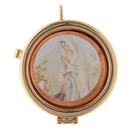 Teca placca ulivo Madonna di Lourdes diam. 6 cm 1