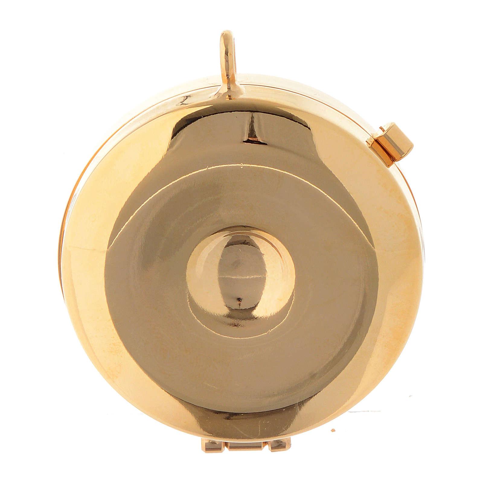 Custode avec plaque olivier Vierge de Lourdes diamètre 5 cm 3