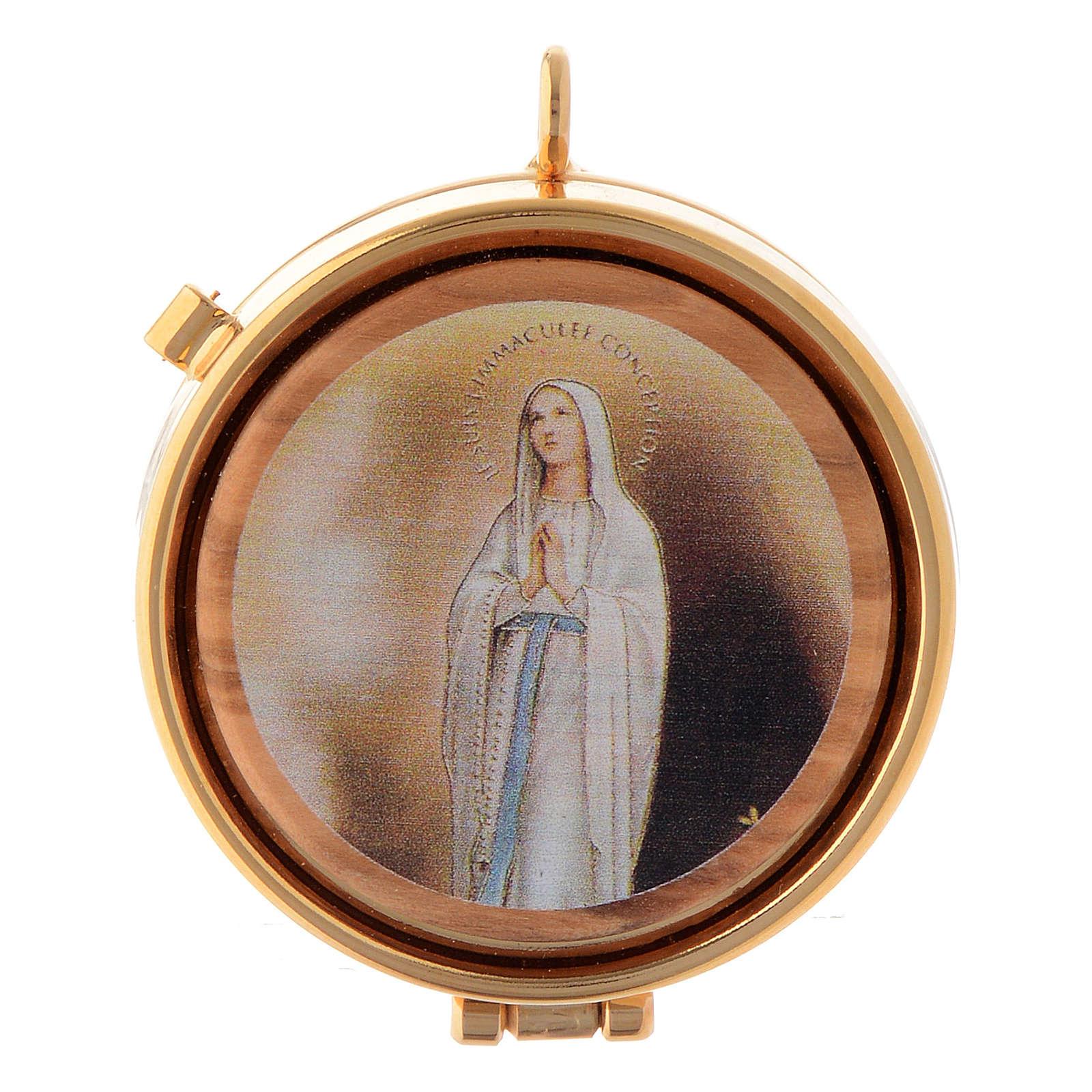 Teca placca olivo Vergine di Lourdes diam. 5 cm 3