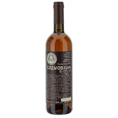Vitorchiano Coenobium Ruscum 2019 white wine 750ml 1