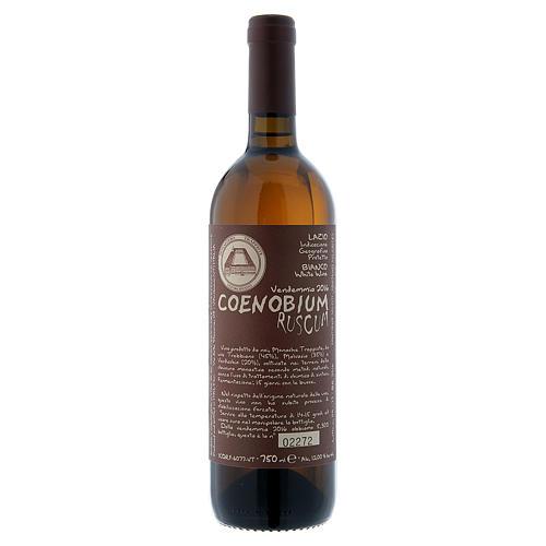 Vino Coenobium Ruscum bianco Vitorchiano 750 ml vend 2016 1