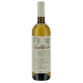 Vitorchiano Coenobium 2019 white wine 750ml s1