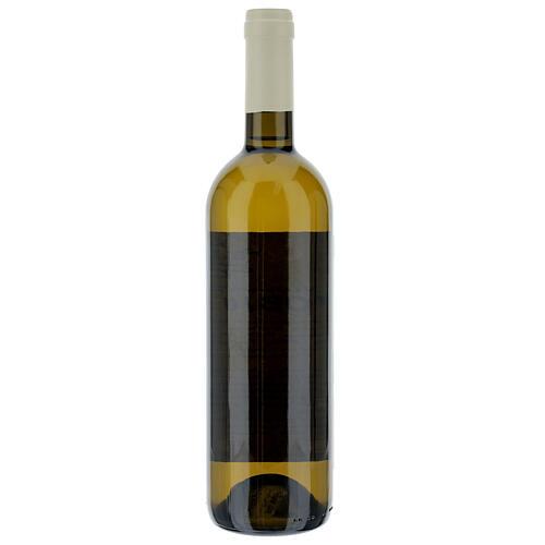 Vino Coenobium blanco Vitorchiano 750 ml  vendimia 2019 2