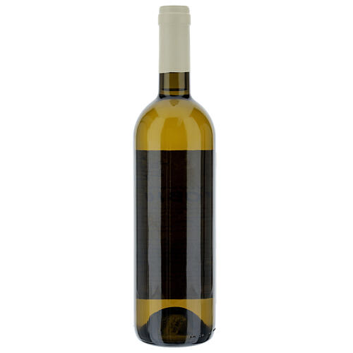 Vino Coenobium bianco Vitorchiano 750 ml vendemmia 2019 2